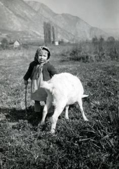 Il était une bergère...