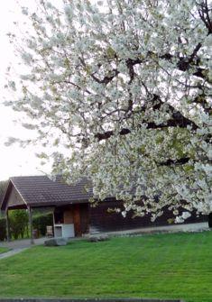 Refuge de Chamblon au printemps