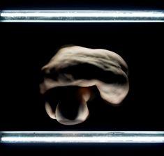 Cie PHILIPPE SAIRE_Vacuum_ Photo de © Philippe Weissbrodt