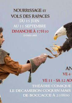 Fauconnerie et animations médiévales La Bayardine, Groupe Médiéval de Saillon