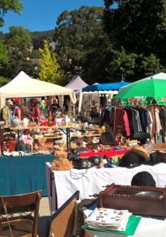 March aux puces jardin anglais neuch tel manifestation for Brocante jardin anglais