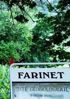 Vigne à Farinet
