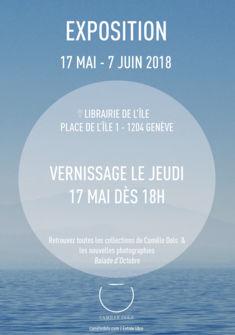 Flyer de l'exposition Camille Dols