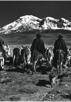 """De la série """"Los Hieleros"""", 1981-81, photographie argentique Les Ayants droit"""