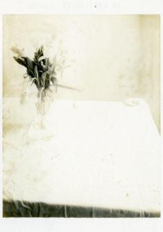 © Laura Letinsky, Untitled, de la série Time's Assignation, 2002. Courtesy galerie Yancey Richardson, New York.