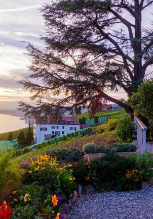 © Montreux Riviera - Pure Inspiration