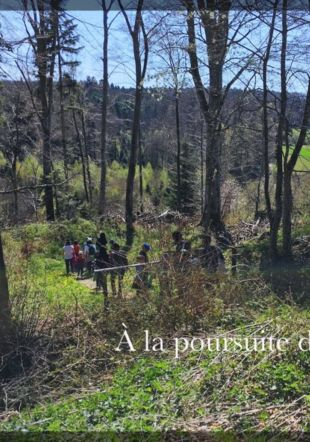 Contes dans la forêt autour de l'Abbaye Daniel Thomas www.carillons.ch