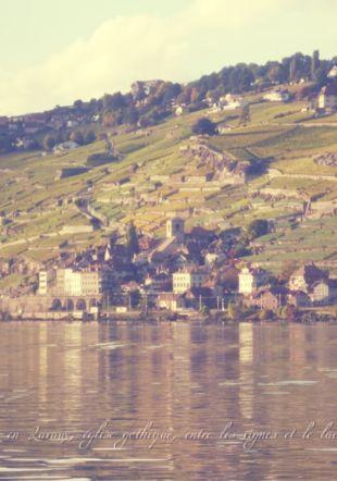 St-Saphorin en Lavaux Daniel Thomas www.carillons.ch