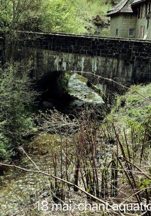 La rivière et le pont