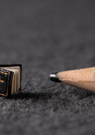Plus petit qu'un crayon...