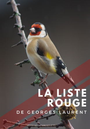 Affiche de l'exposition - La liste rouge de Georges Laurent Georges Laurent