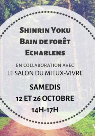 Shinrin Yoku - bain de forêt