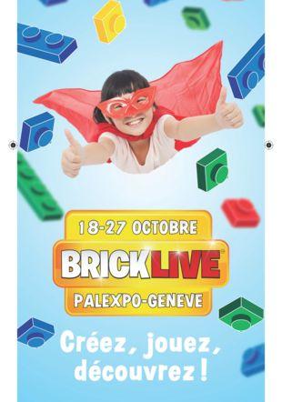 Copyright - Bricklive