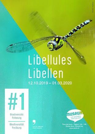 Libellules - #1 Biodiversité Fribourg Tous droits réservés - Photo Thomas Marent - Design NG Tornay