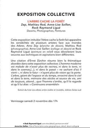 carton 1 Rock Raymon Ligué, Anne-Lise Saillen
