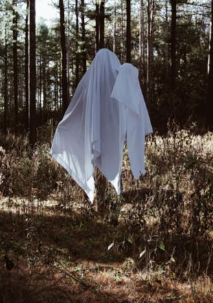 Novembre des fantômes