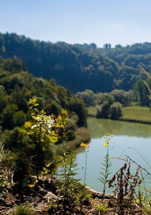 Lac de Pérolles michaelmaillard.com