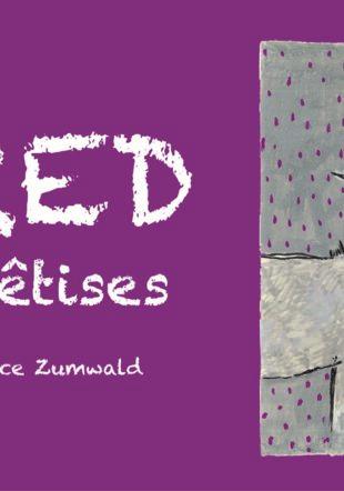 Couverture du livre Alfred fait des bêtises © Béatrice Zumwald