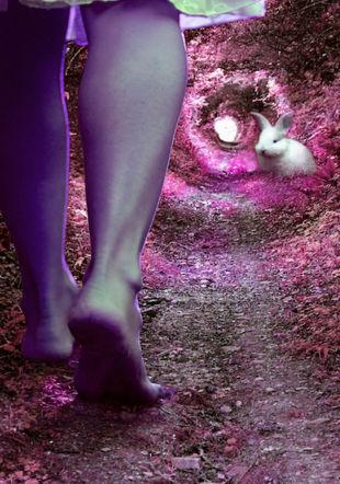 Alice, retour aux merveilles Petar Paunchev