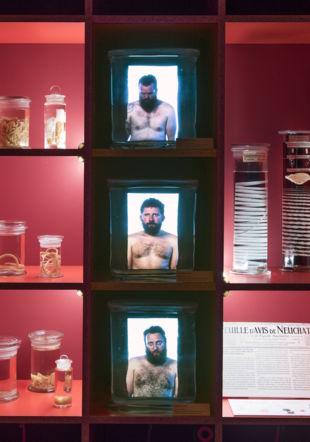 """Vue de l'exposition """"Manger"""" © Alain Germond / MHNN"""