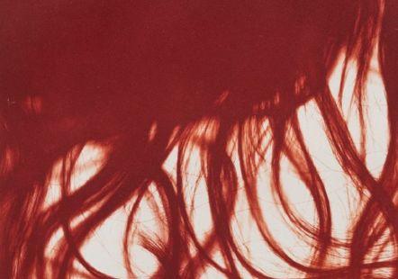 Monique Jacot, Sans titre [Crins], [2014-2015], Héliogramme sur papier vélin Arches, Cabinet cantonal des estampes, Collection de l'État de Vaud, Musée Jenisch Vevey