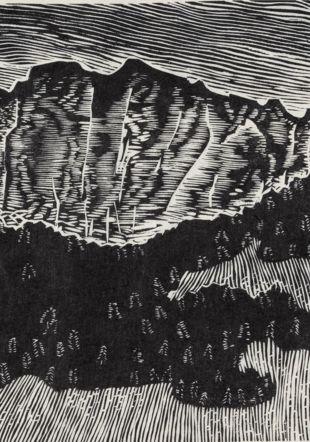 Pierre Aubert, Les Aiguilles de Baulmes (détail), 1987, gravure sur bois, 330 x 238 mm, Cabinet cantonal des estampes, Fondation Pierre Aubert, Musée Jenisch Vevey