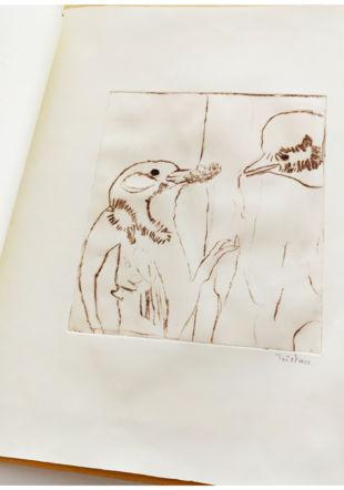 Livre d'artiste et gravures, Cours enfants