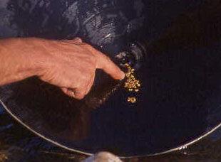 Recherche de l'or