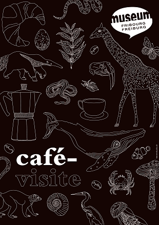 Café-visite hervé studio