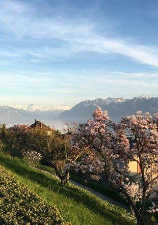 Le paysage depuis l'esplanade du carillon de Chantemerle