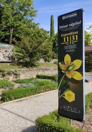 Jardin botanique de Lausanne MJBC