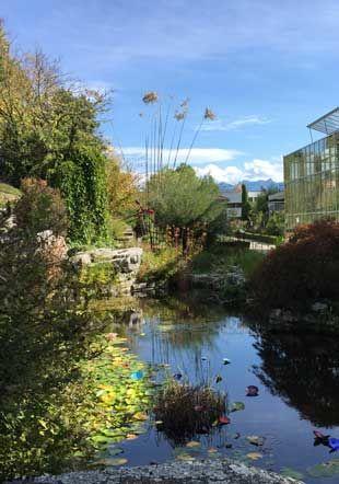 Jardin botanique et serre MJBC