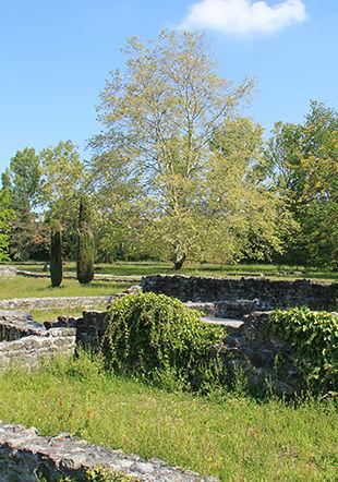 Parc archéologique de Lausanne-Vidy