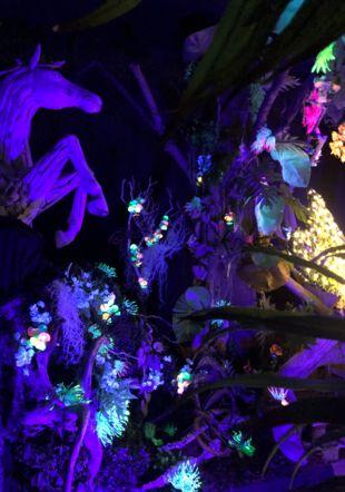 La Serre aux papillons - Jardin Nocturne - Schilliger Gland