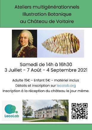 Illustration botanique au Chateau de Voltaire