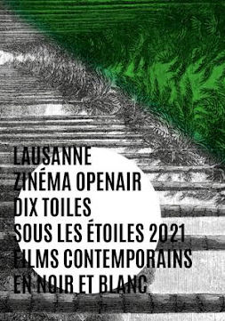 Zinéma Open air - Dix toiles sous les étoiles