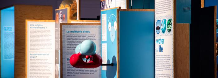 Eau, l'expo Muséum d'histoire naturelle de Toulouse
