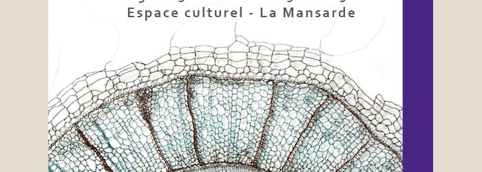 """Photo : """"Gossypium Hirsutum"""", fil de cuivre crocheté, oxydé Marta Blanc"""