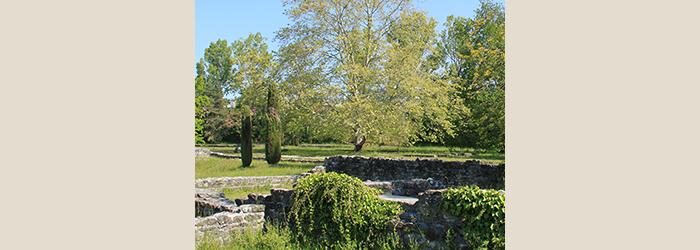 Parc archéologique de Lausanne-Vidy MRV