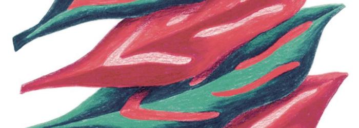 Yasmina Sayad vous prête sa plume pour écrire un mot