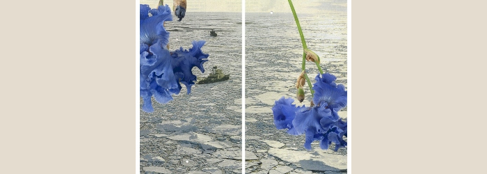 """Silvie Defraoui, """"Polarmeer"""", de la série """"Faits et Gestes"""", 2014. Impression jet d'encre sur papier Hahnemühle, éd. 1/3 279 x 132 cm (x2) Georg Rehsteiner"""