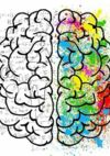 braingym enfant