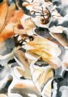 Aquarelles secrètes - hdutrem hdutrem